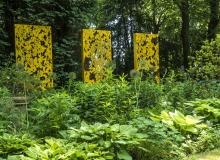 Rainer Lötzsch ArboretumTrautmann #20