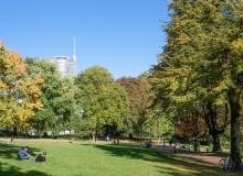 Paul Kim - Stadtgarten 3